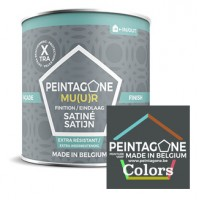 Peintagone Facade Finish Colors